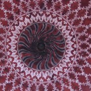 One Mandala the Circle of Life